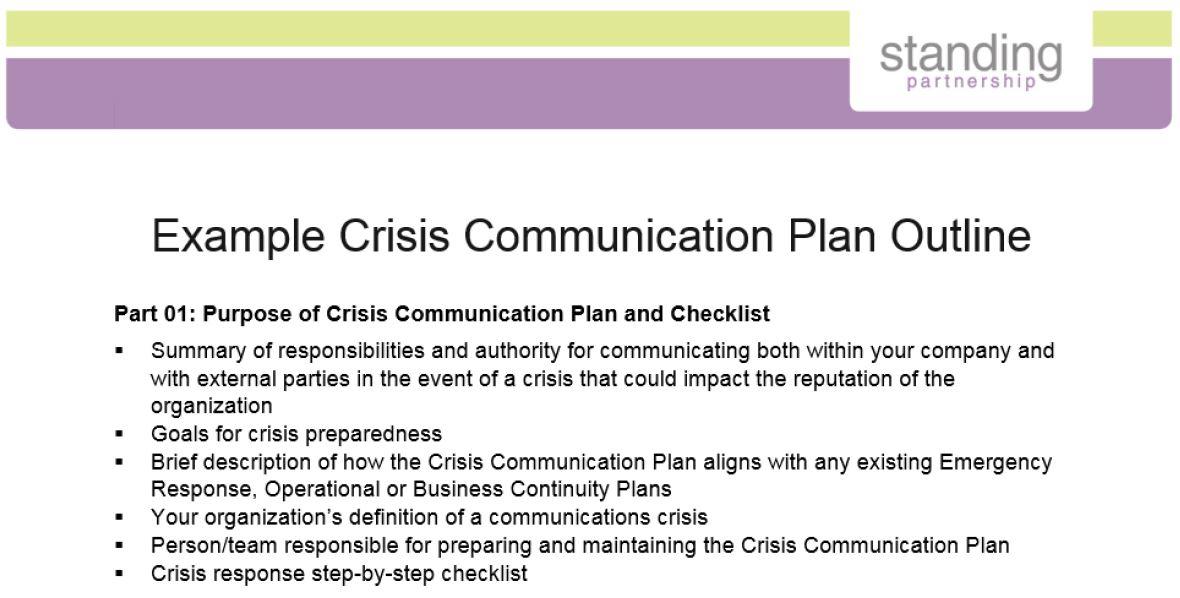 Crisis Plan Example Preview.jpg